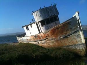 boat on tomales bay, pushed onto shore, weathered and worn