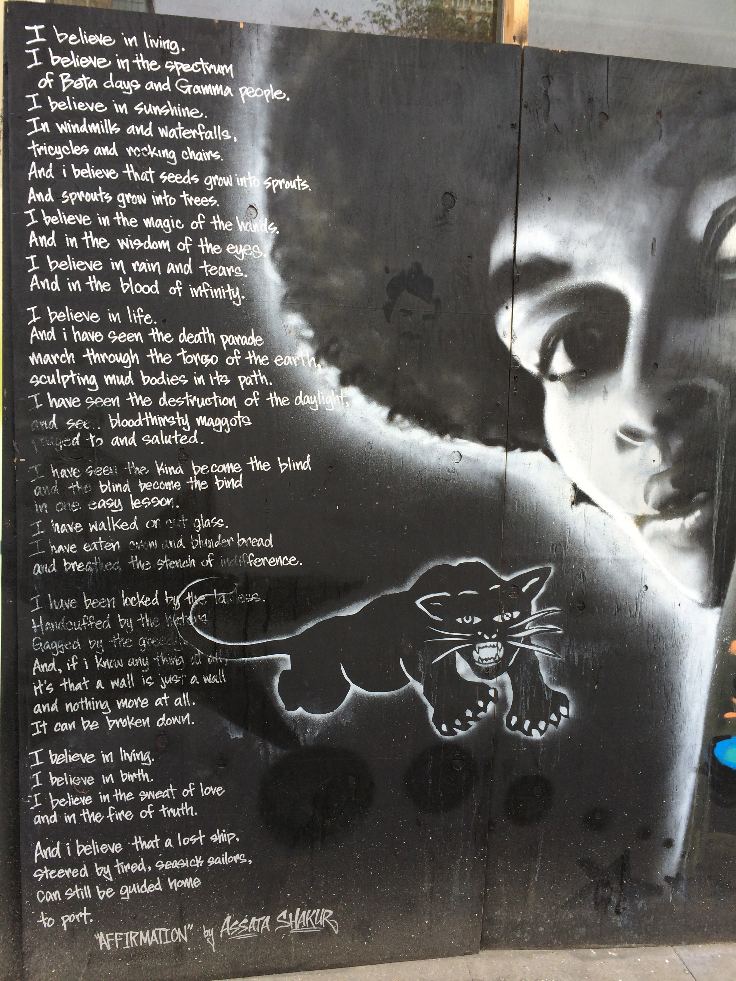 assata shakur essay Justice and poltical literacy: assata shakur assata shakur, a political and social activist who struggled for the liberation of african americans in the us her.