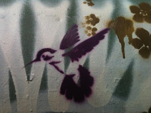 Hummingbird graffiti - Oakland