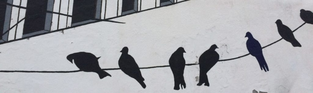 graffiti of black birds on a wire